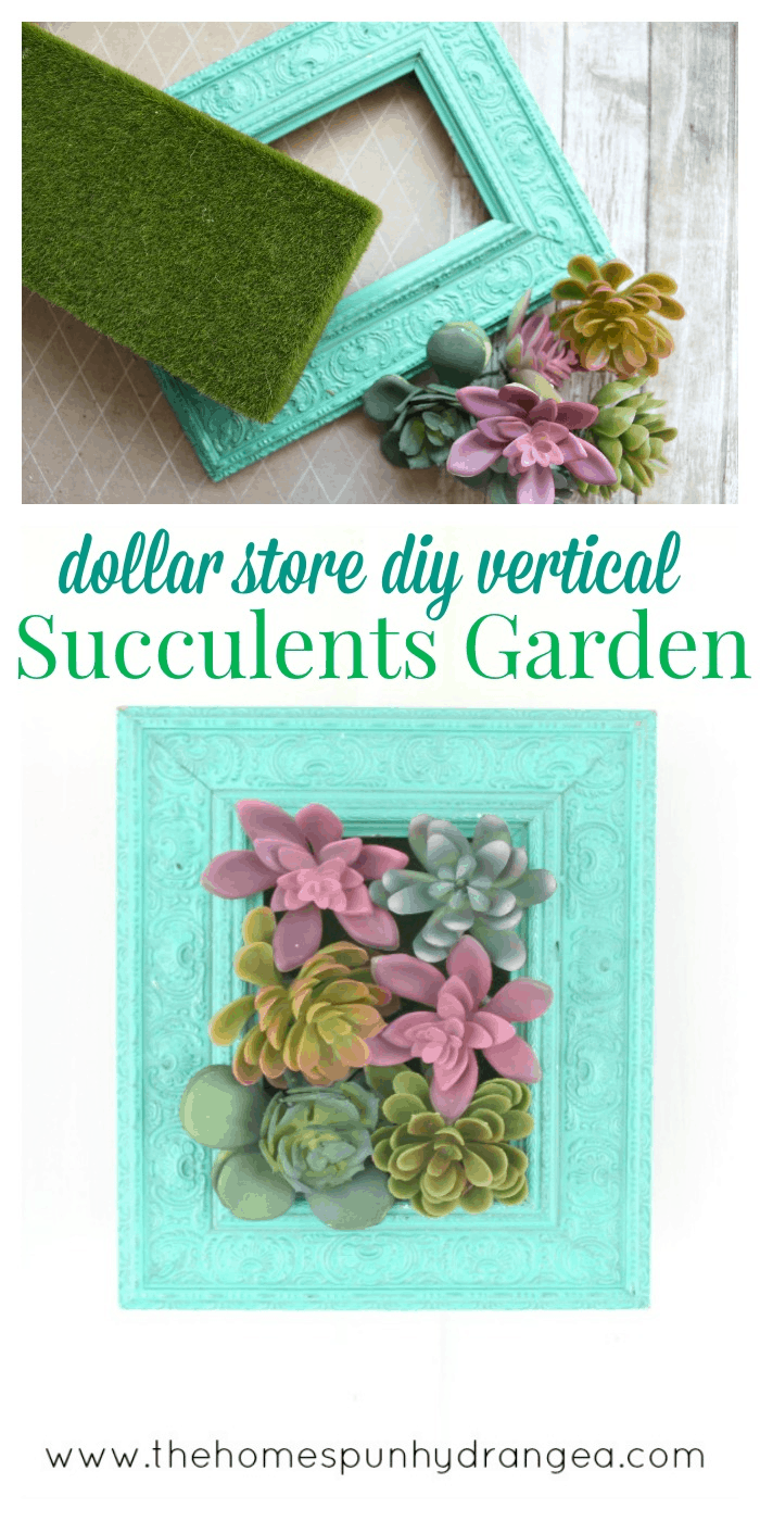 Succulents Crafts