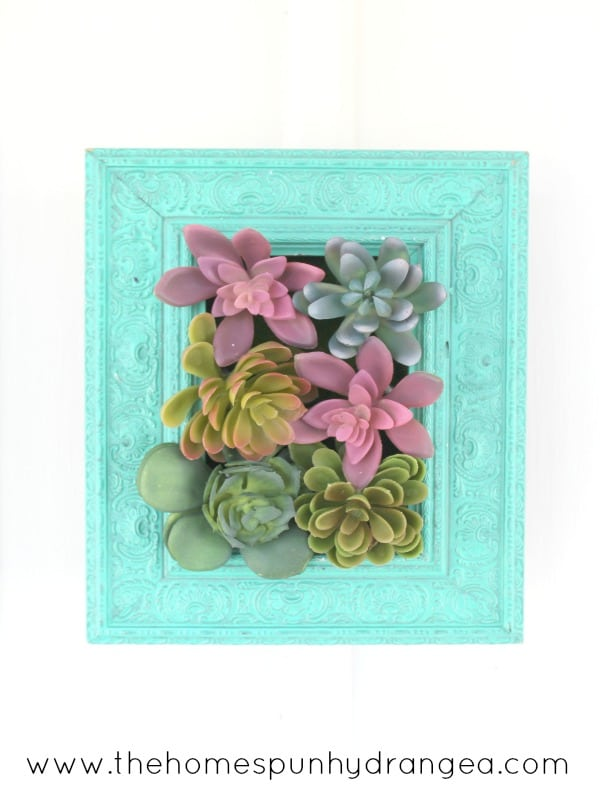 Succulents Crafts