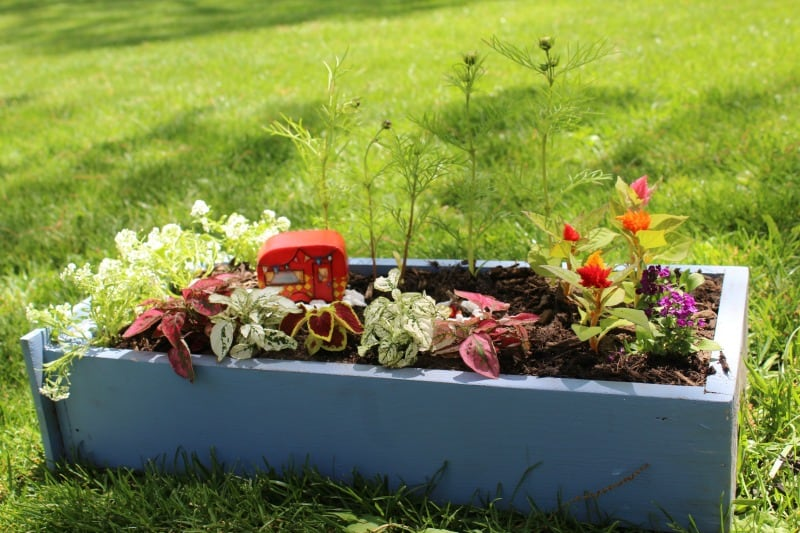 How to Make a Fairy Garden Out of an Old Drawer The Homespun