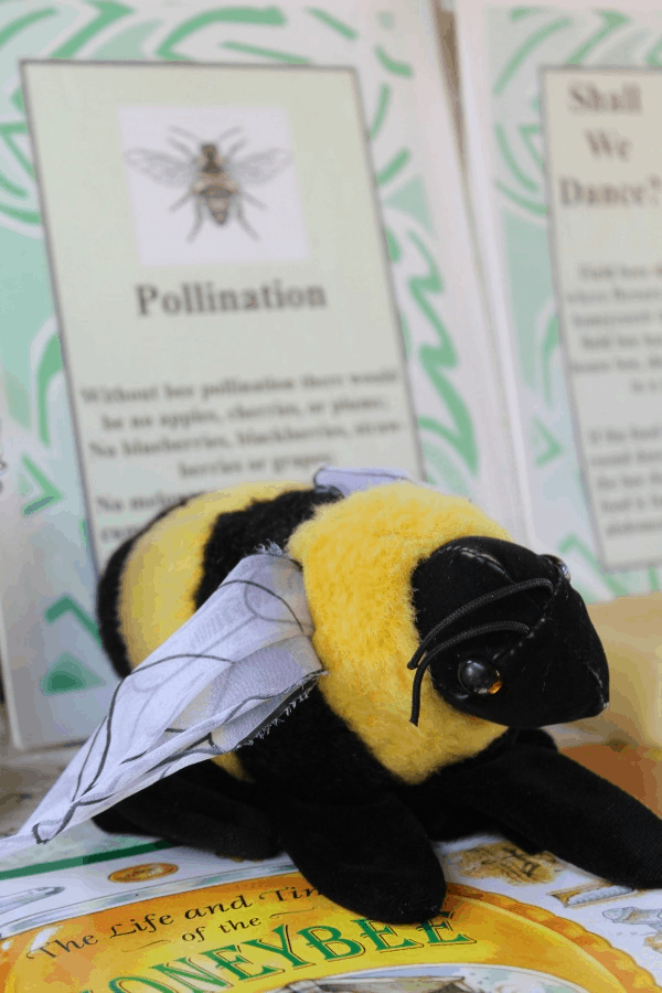 Ways to Attract Bumble Bees