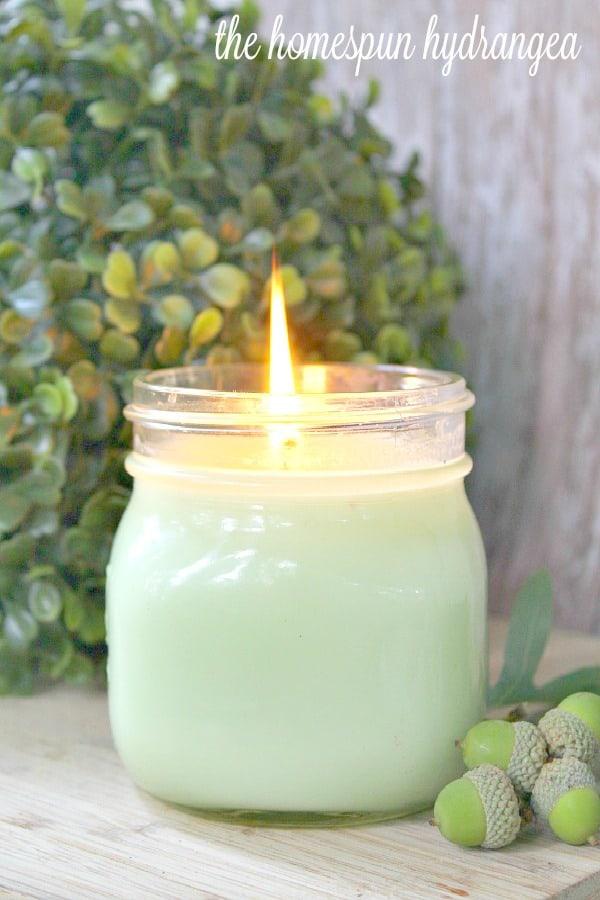 Eucalyptus Essential Oil Candle Recipe