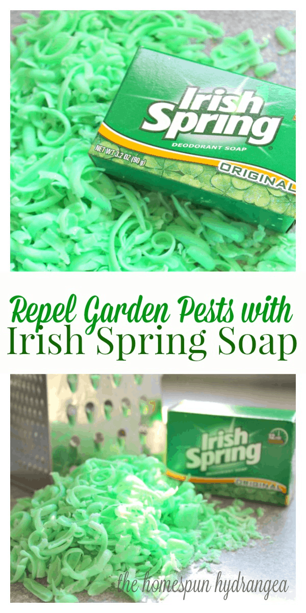 How to Repel Garden Pests with Irish Spring Soap